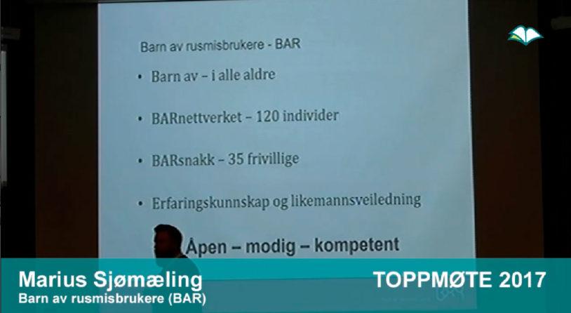 Toppmøte 2017 – Marius Sjømæling